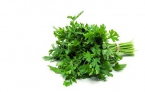 Parsley - Culinary herbs