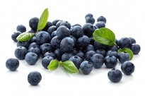 Blueberry - Freeze -dried Fruits