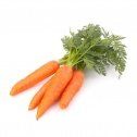 Carrot -  Freeze-dried Vegetables