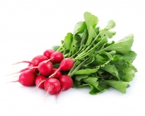 Radish -  Freeze-dried Vegetables